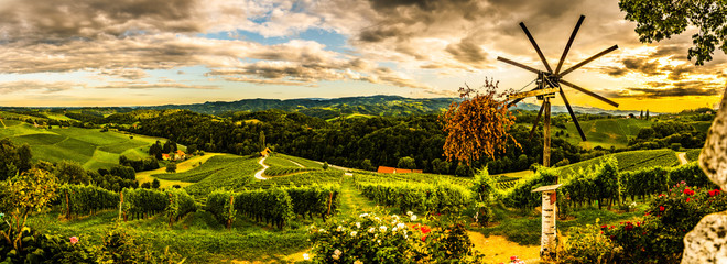 Panorama view of Vineyards in summer in Slovenia. Heart shaped road in Spicnik Wall mural