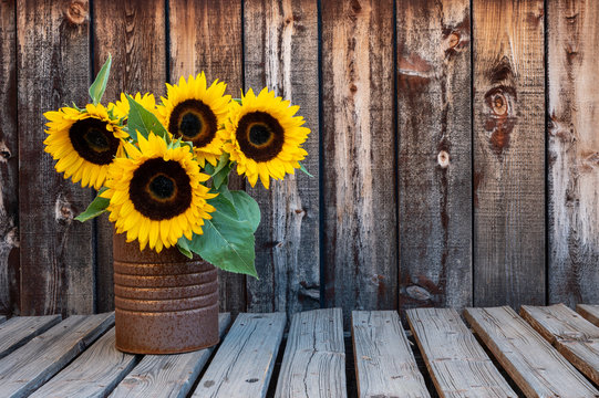 A rusty can filled with a bouquet of sunflowers on a rustic wooden plank table with space for copy.