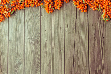 A sea buckthorn berries  on a dark wooden background. Autumn concept. Top view, flat lay composition. Copy space for text