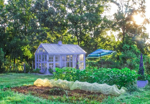 Beautiful Garden with White Greenhouse on a summer morning, selective focus, with soft sunlight