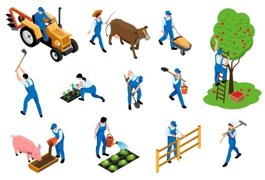 Farmer Isometric Icons Set