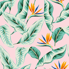 Tropical strelitzia flowers, green banana palm leaves, pink background. Vector seamless pattern. Jungle foliage illustration. Exotic plants. Summer beach floral design. Paradise nature