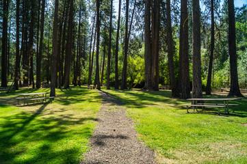 Footpath in Catherine Creek State Park in eastern Oregon