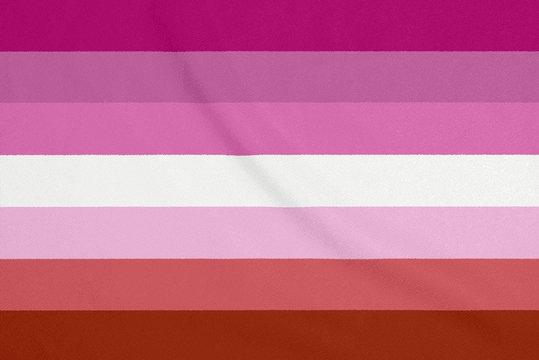 LGBT lesbian community flag on a textured fabric. Pride symbol