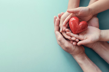 adult and child hands holding red heart, heart health, charity volunteer donation, CSR concept, world heart day, world health day, family day, adoption foster care home, organ donor day