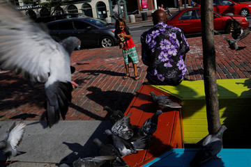 Pigeons gather around a man and boy offering them food in Portland