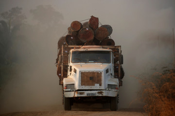 A truck loaded with logs cut from an area of the Amazon rainforest is seen near Humaita