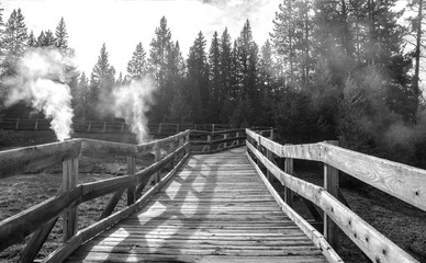 Wooden bridge over geyser in the Yellowstone national park