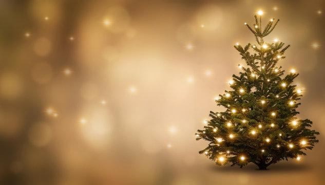 festlich geschmückte  weihnachtstanne