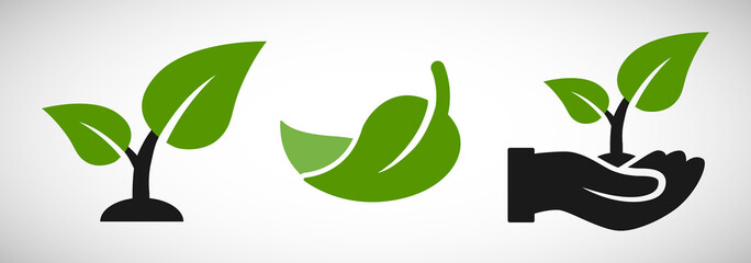 Seedling and hand with leaves eco growing icon