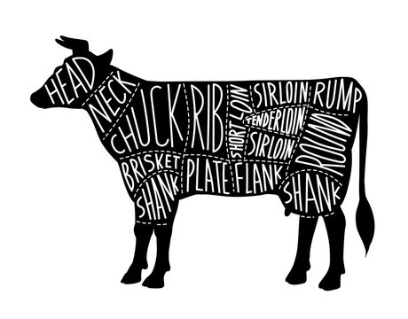 Meat cuts chart for butcher shop with black cow vector illustration isolated.