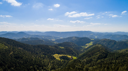 Wall Mural - Schwarzwald Landschaft