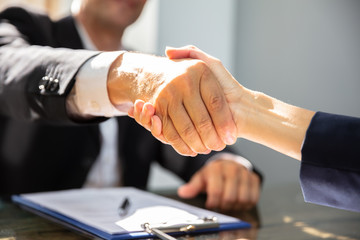 Businessperson Shaking Hand With Partner
