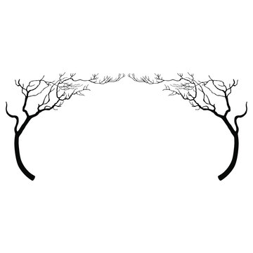 Beautiful floral decor with silhouettes of stylized bare trees. Oval frame. Nature motif. Black and white silhouetted background.