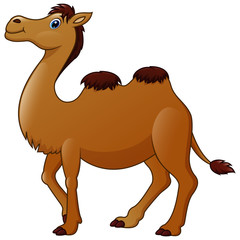 Cute a camel cartoon
