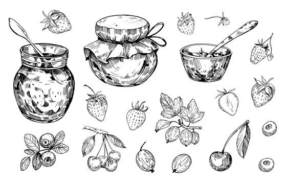 Jar with jam and berries. Hand drawn outline converted to vector
