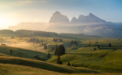 Seiser Alm (Alpe di Siusi) with Langkofel mountain at sunrise in summer, Italy Fototapete
