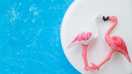 White painted a two flamingoes with white cream on bright blue background.