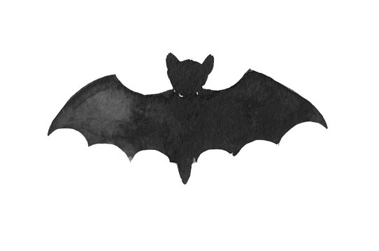 A silhouette of bat, watercolor ink black and white halloween decoration element on white background isolated