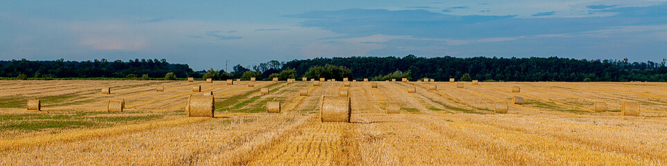 Photo sur Aluminium Bleu jean Yellow golden straw bales of hay in the stubble field, agricultural field under a blue sky with clouds. Straw on the meadow. Countryside natural landscape. Grain crop, harvesting.