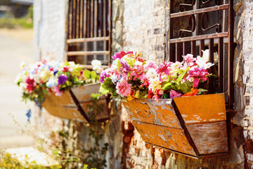 Window box containers of flowers.