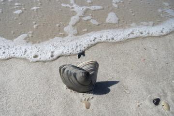 herzlicher Urlaub am Strand
