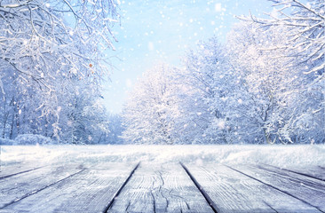 Fotobehang Lichtblauw Winter Christmas scenic landscape with copy space. Wooden flooring, white trees in forest covered with snow, snowdrifts and snowfall against blue sky in sunny day on nature outdoors, blue tones.