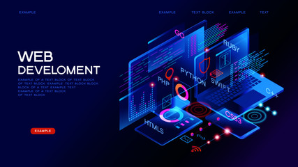 Programming web banner. Best programming languages. Technology process of Software development Wall mural