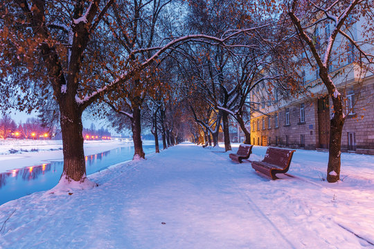 uzhgorod town at dawn in winter. benches under the trees on snow covered linden alley, the longest in europe. bright lanterns on the other side of the frozen river uzh. bridge in the distance