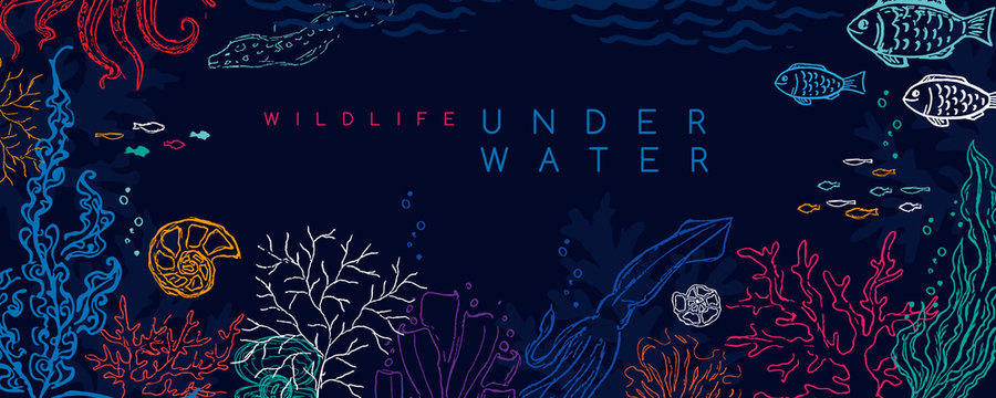 Underwater banner. Vector background with reef landscape. Corals, fish, polyps, shellfish and seaweeds and other sea wildlife.