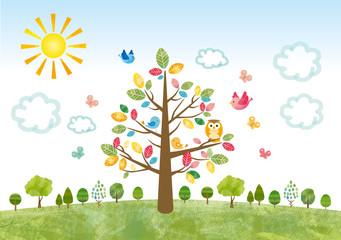 エコ 大木 木 樹木 太陽 丘 景色 森 林 大自然 環境
