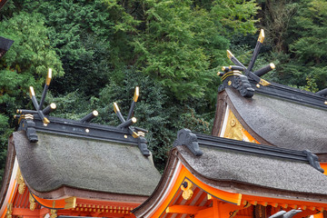 The roof of Kumano Hayatama Taisha shrine. Shingu. Wakayama. Japan