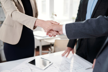 Business People Shaking Hands Closeup