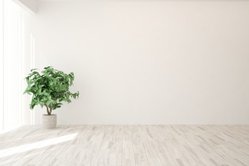 Empty room in white color. Scandinavian interior design. 3D illustration