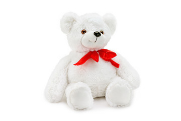 Image of white toy teddy bear sitting at isolated white background.