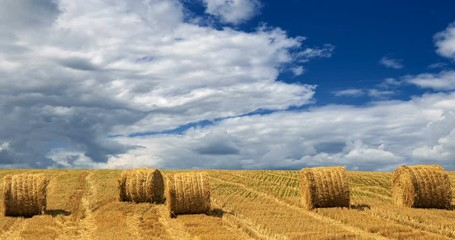 Wall Mural - Yellow haystacks, field wheat, blue sky with clouds. Beautiful dynamic landscape on Sunny day. Beauty nature, agriculture and seasonal harvest time. Scenic agricultural land, cinemagraph, 4K Timelapse