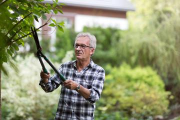 Senior man pruning branches in back yard