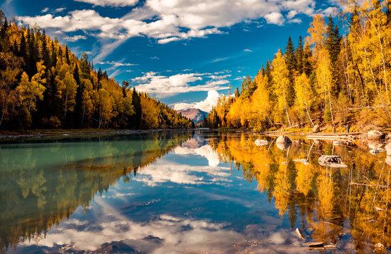 Xinjiang Kanas River autumn scenery