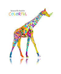 Colorful giraffe, sketch for your design