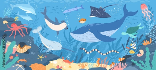 Wall mural Fish and wild marine animals in ocean. Sea world dwellers, cute underwater creatures, coral reef inhabitants in their natural habitat, undersea fauna of tropics. Flat cartoon vector illustration.