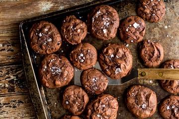 Overhead view of flourless cocoa cookies in baking tray
