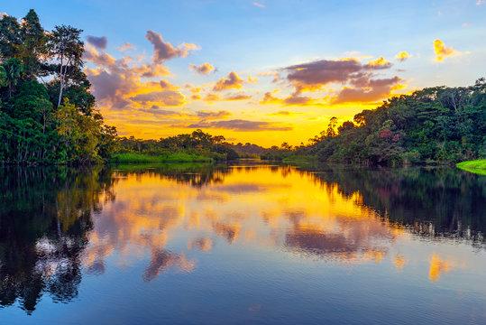A magic sunset in the Amazon Rainforest inside Yasuni national park. The Amazon rainforest comprise the countries of Ecuador, Peru, Bolivia, Brazil, Colombia, Suriname, Venezuela, French Guyana.