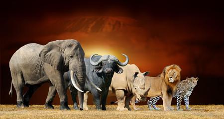 Big five on savanna landscape background and Mount Kilimanjaro at sunset Wall mural
