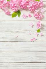 Foto auf AluDibond Hortensie pink hydrangea on white wooden background