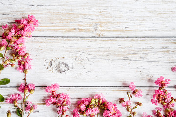 Spring Rustic background with pink flowers. Copy space on white wood. Valentine day internet sales concept, online shopping holiday background. Mockup, top view, flat lay