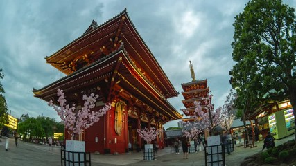 Wall Mural - Time Lapse video of Sensoji Temple in Tokyo city, Japan