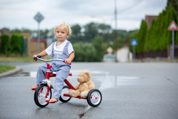 Cute little boy, with teddy bear toy, riding tricycle on the street in the rain, barefeet Wall mural