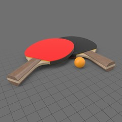 Table tennis paddles with ball