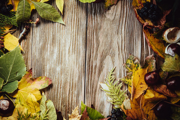 Autumn wooden background with maple leaves with copy space