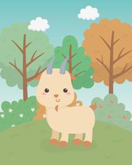 cute goat animal farm character
